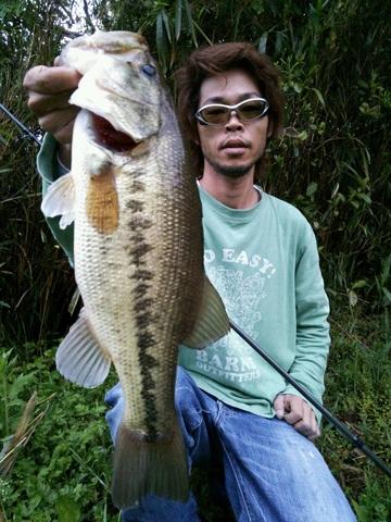 0511 noike 45cm.JPG
