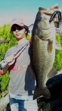 10月20日 琵琶湖オカッパリで釣れる.jpg