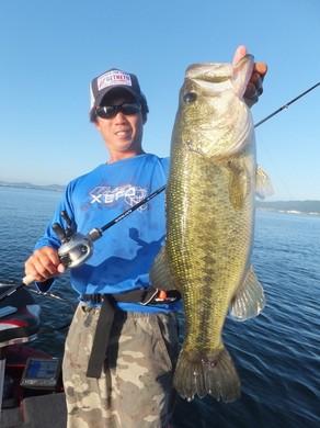 1 夏の琵琶湖でデカバス.JPG
