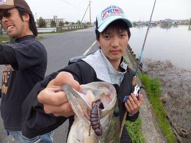 テキサスリグで釣れる 4月30日.JPG