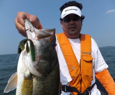 テキサスリグで釣れる7月26日.JPG