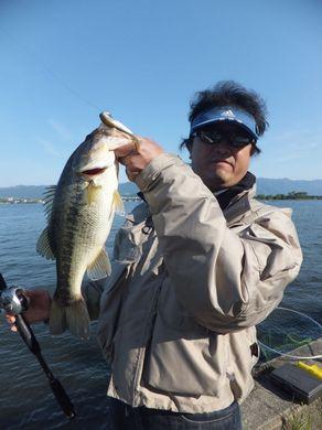 ノーシンカーで釣れる 5月13日.JPG