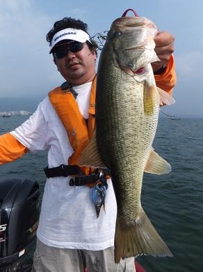ヘビダンで釣れるワーム 7月26日.JPG