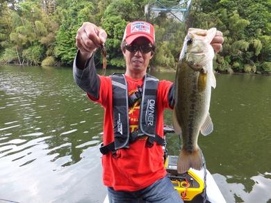 亀山ダムで釣れるジャスターホッグ23.JPG