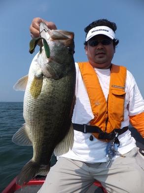 夏の琵琶湖で釣れる 7月26日.JPG