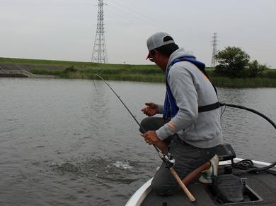小貝川で釣れる 6月5日.JPG