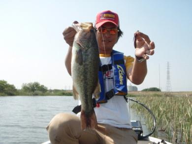 小貝川で釣れるワームは 5月20日.jpg