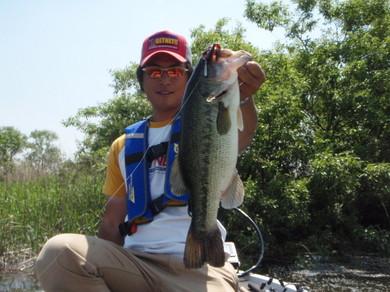 小貝川で釣れる直リグ5月20日.jpg