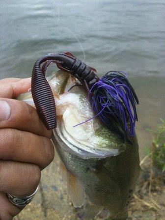 布目ダムで釣れるルアー.JPG