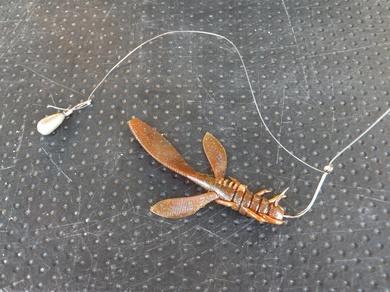 東岸オカッパリで釣れているルアーは5月18日.JPG