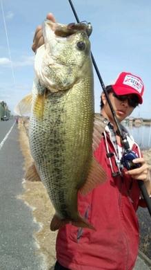 東岸オカッパリで57cm テキサスリグで釣れる.jpg