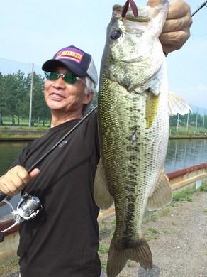 東岸水路で釣れる.JPG
