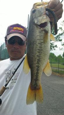 東岸水路で釣れるジャスターホッグ43のヘビテキ 8月5日.jpg