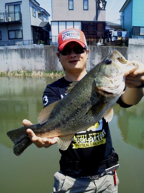 東幡野池で50UP釣る方法.JPG