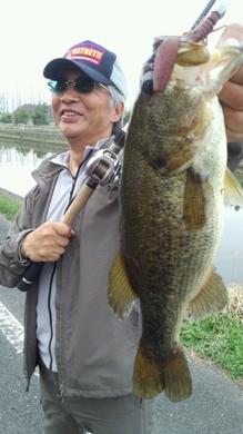 水路でテキサスリグ釣れる 4月10日.jpg