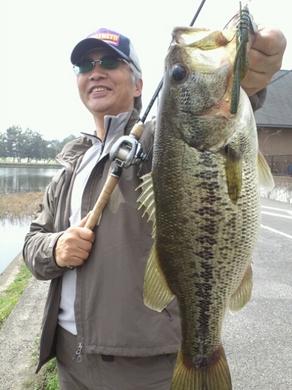 水路で50UP釣れる テキサスリグ 4月10日.jpg