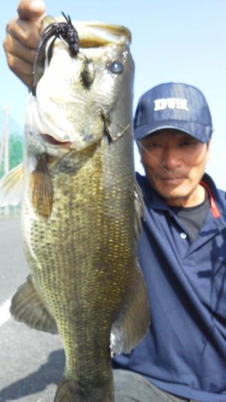 琵琶湖でオカッパリ、木浜のカバー.jpg