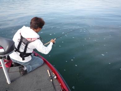 琵琶湖でライトリグ.JPG
