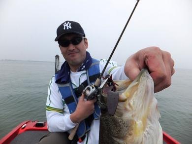 琵琶湖で直リグ釣れる 5月9日.JPG