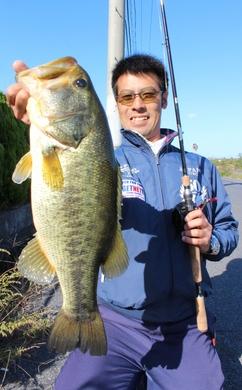 琵琶湖のオカッパリで釣れるデカバス 10月19日.JPG
