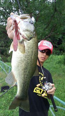 琵琶湖のオカッパリで釣れるワーム 7月24日.jpg