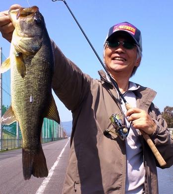 琵琶湖の水路で釣れる.jpg
