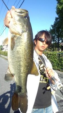 琵琶湖オカッパリでデカバス 10月5日.jpg