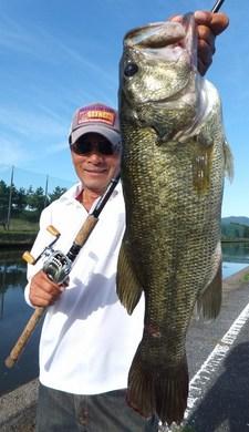 琵琶湖オカッパリでデカバス釣れる 9月25日.jpg