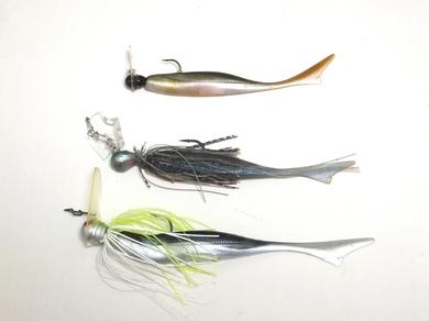 琵琶湖オカッパリで巻いて釣れる.JPG