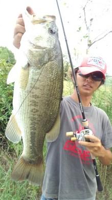 琵琶湖オカッパリで釣れる 9月9日.jpg