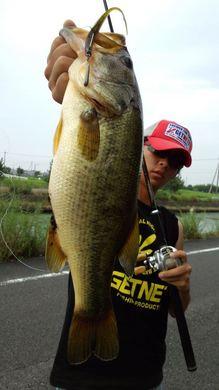 琵琶湖オカッパリで釣れるポイント 7月24日.jpg