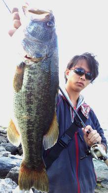 琵琶湖オカッパリで54cm 11月10日.jpg