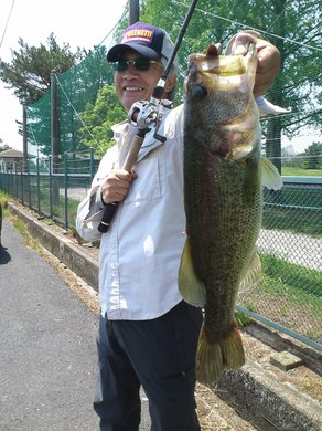 琵琶湖岸釣りで釣れる 48cm 5月5日.JPG