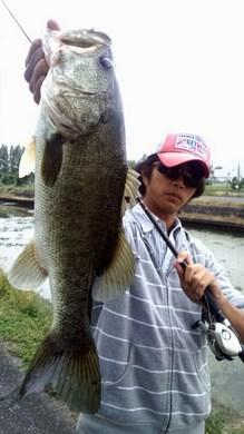 琵琶湖東岸で釣れる 10月17日.jpg