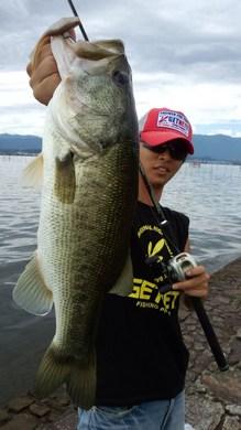 琵琶湖東岸オカッパリで55cm.jpg