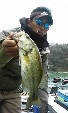 相模湖で釣れる.jpg