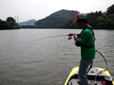 相模湖で釣れる 6月8日.jpg