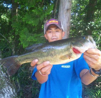 秋の野池で釣れる 9月17日.jpg