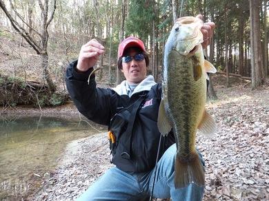 野池でデカバスが釣れるネコリグ.JPG