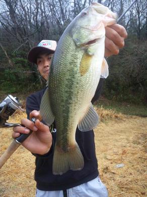 野池でネイルリグ釣れる 3月17日.jpg