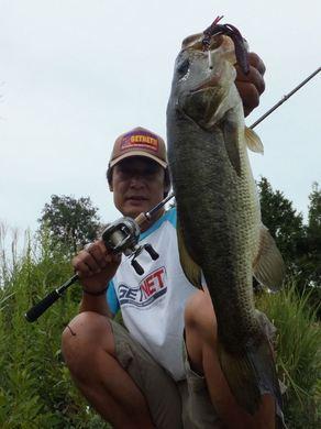 野池で直リグ釣れる 9月24日.JPG