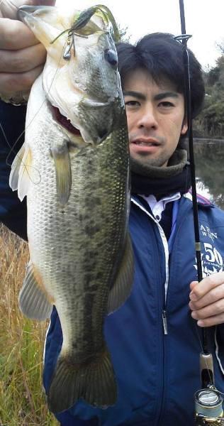 野池で豆ジカ釣れる.jpg