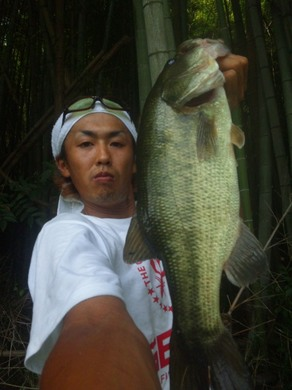 野池で釣る萩ちゃん 7月24日.jpg