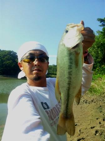 野池で釣れるリグ10月19日.jpg