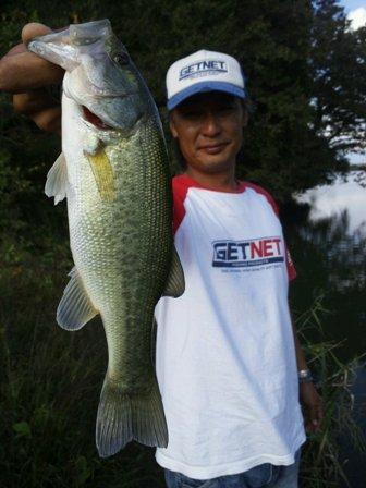 野池で釣れるリグ10月23日.JPG