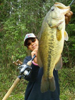 野池で釣れる直リグ、47cm4月16日.jpg