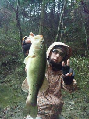 野池オカッパリで釣れるルアー.jpg