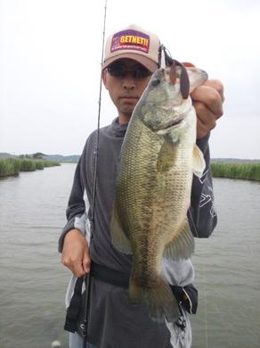 霞ヶ浦で釣れる直リグ.jpg