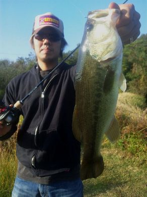 11月の野池で釣れる.jpg