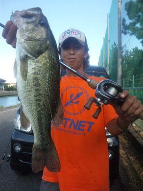 14 琵琶湖水路で釣れる.jpg